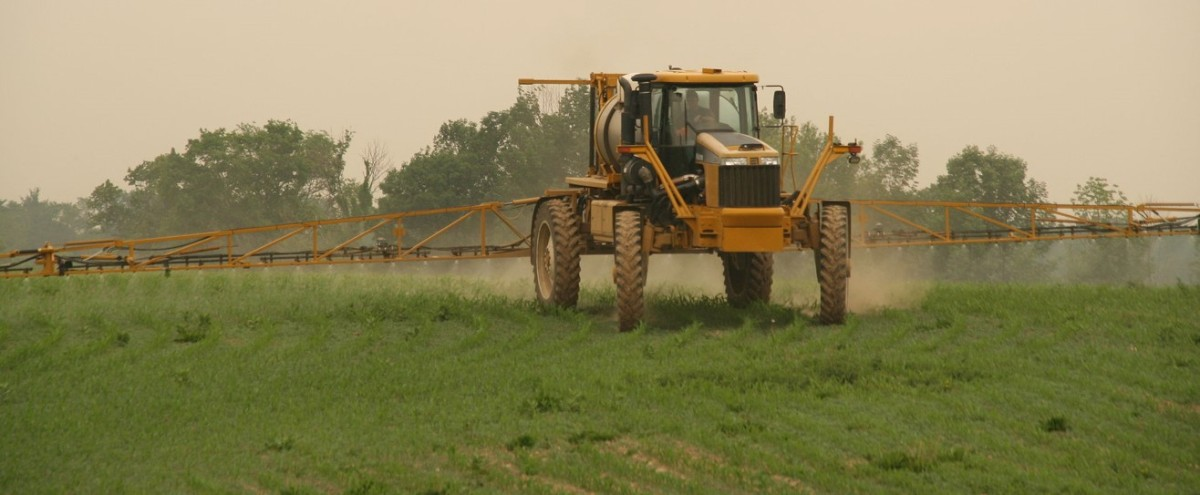 De-coupling the GMO-glyphosatelink