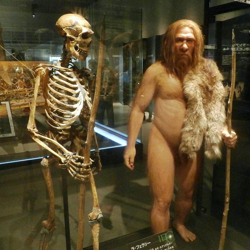 Interpreting ancient DNA: Not so easy a caveman could doit